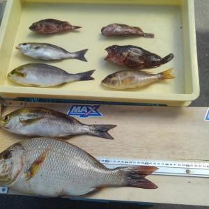 小物釣りの簡単料理