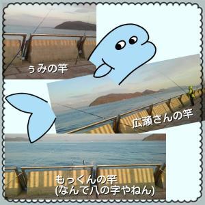 遠征  香川到着  カレイ狙い