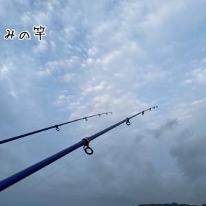 カワハギ狙いから、夜釣り真鯛狙い