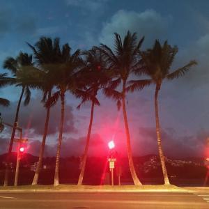 ハワイ暮らしのつぶやき 人生で幸せを感じる人のタイプ