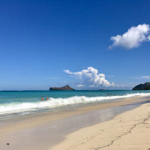 友達とのハワイ観光 2019 11月③ ワイマナロビーチ