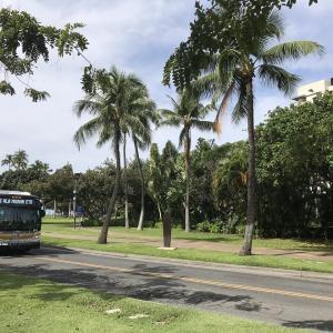 ハワイ パンデミック失業補償
