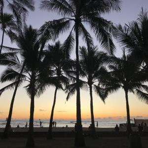 ハワイに旅行が出来る!!今日のニュース