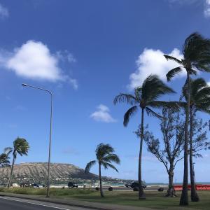 ハワイでヘアカットをしてもらった結果