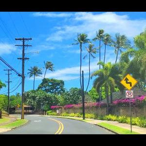ハワイ暮らしのええねんシリーズ 最終回