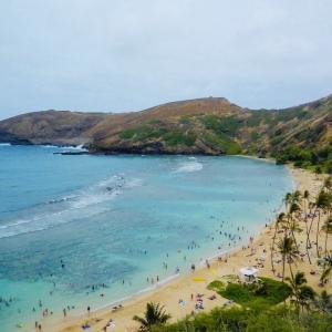 全米No1のハワイビーチ ハナウマ湾の今後