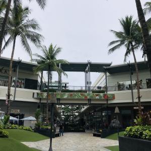 ハワイの最新ニュース 日本からの観光客受け入れ