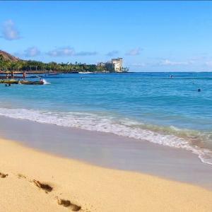 ハワイ暮らし 新型コロナで外出禁止中(>_<)