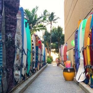 知る人ぞ知る今日のハワイのビーチ