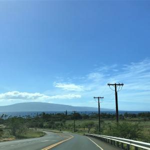 ハワイニュース ワクチン約1400回分を廃棄した理由