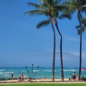 ハワイで人気のチーズバーガーイン・パラダイス