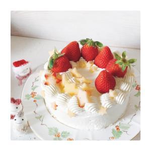 ケーキだけのクリスマス(≧▽≦)