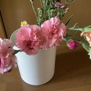 カーネーションって真夏にも咲くんだね。