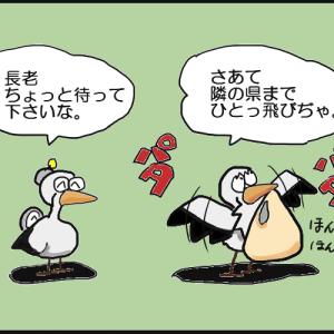 鳥用マスク