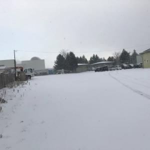 出張の朝は吹雪だった
