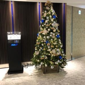 各所に輝くクリスマスツリー