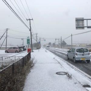 道南も本格的な吹雪が