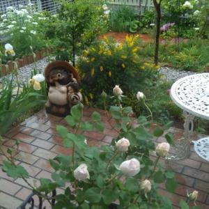 5月に向かう庭