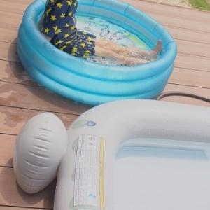●プール開き
