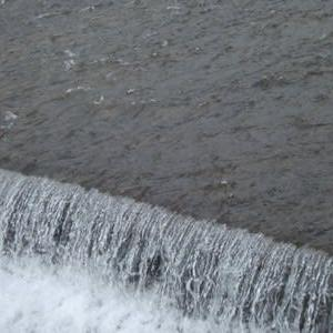 #292 「白河の 清きに魚も 住みかねて〜〜〜」どんどんツマラヌ世の中になっていくような・・・