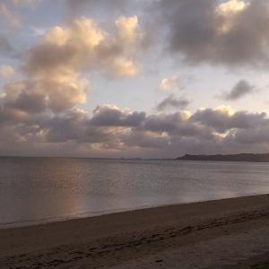 沖縄から愛をこめて生きようと足掻いている女のブログです。質問にお答えさせていただきます。