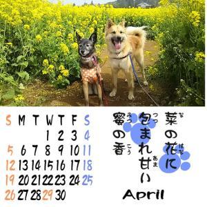 4月だよ 10年分の カレンダー