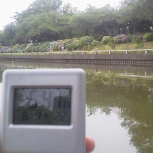 小合溜釣行  0604