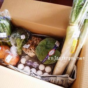 農家から直接野菜を買う