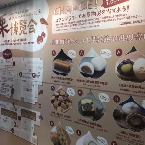 消去法を磨く【四天王寺中学受験ブログ】