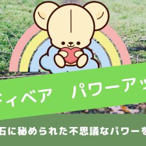 【手芸 開運テディベア】開運テディベアがパワーアップします!
