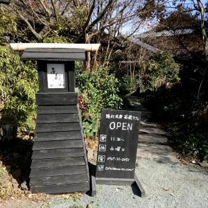 【へそログ】隠れ茶房 茶蔵カフェ