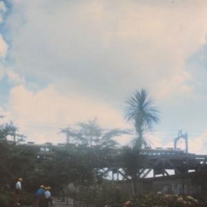 【鉄道スケッチ】隅田公園から見かけた東武特急「DRC」(1984年)
