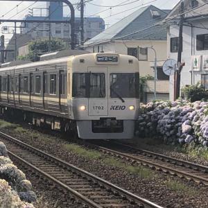【鉄道スケッチ】今日も井の頭線と紫陽花のコラボレーション