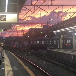 【徒然日記】夕陽が綺麗だったので、思わず1枚!