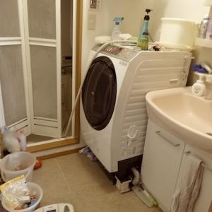消化不良…荒れた脱衣所の片付け。夏捨て7