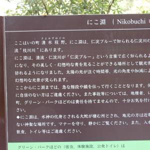 高知県 にこ淵・安居渓谷・中津渓谷