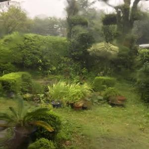 台風北上中・・・またも夏野菜直撃