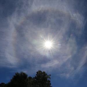 太陽のまわりに光の輪っか。