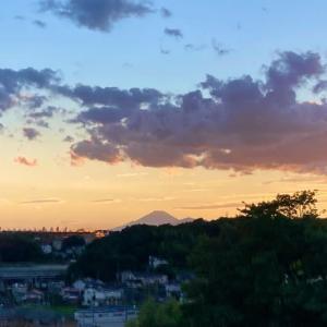 富士山Now!