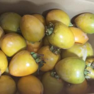 令和最初の干し柿