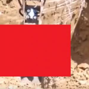 【※YouTube動画】裏庭に落とし穴掘ってたら熊出てきた!!!