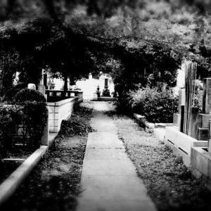 【怖い話】幽霊が消えた場所を掘ってみたら、コレが出てきたんだが…