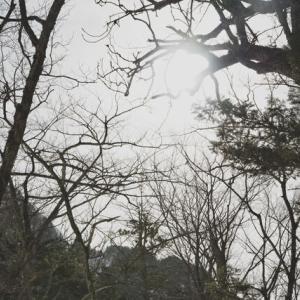 【怖い話】長野で登山中、不可解なことがあった