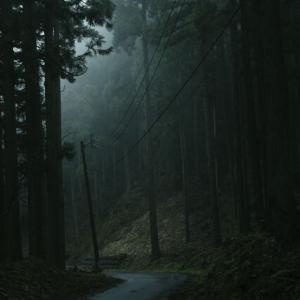 【夜の山道】タクシー「お客さん、この道さっきからなんかおかしいですよね…」