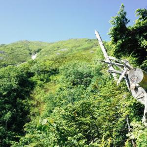 【オカルト】鈴の音が聞こえると家を飛び出して山に入ろうとする女が後を絶たない