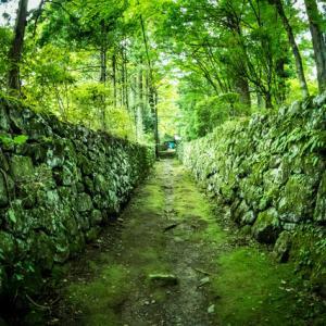 【ミステリー】竹やぶの中の階段、毎回段数が変わってしまう・・・