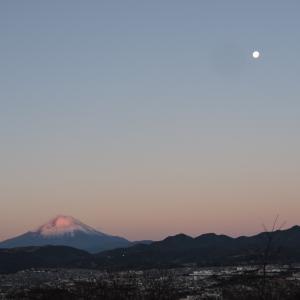 新年おめでとうございます今年もよろしくお願いします今年も富士山で始まります。「一富...