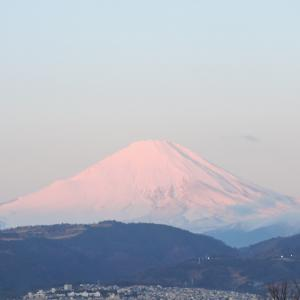 大寒過ぎてやっときれいな富士山