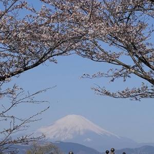 今日も富士山