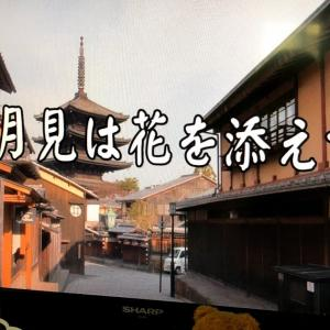 NHK趣味の園芸は、本日は桃🍑🍑🍑